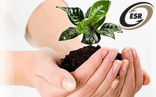La importancia de las Empresas Socialmente Responsables